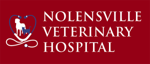 Nolensville Veterinary Hospital